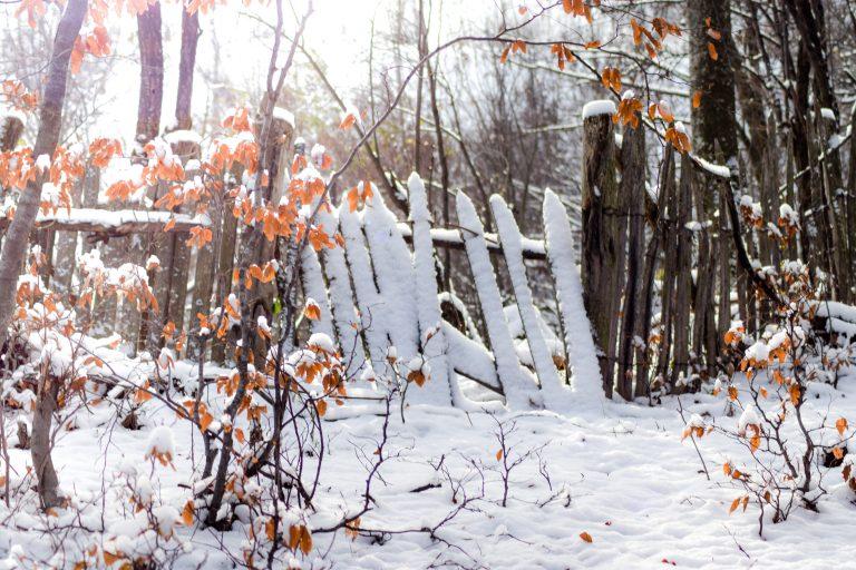 Iarna a venit oficial în România